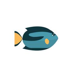 marine life fish cartoon sea fauna animal vector image