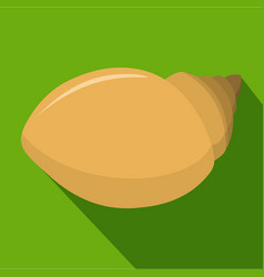 Mollusks shell icon flat style vector
