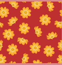 Orange yellow cosmos flower on red background vector