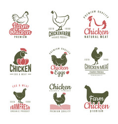pollo labels fast food chicken logotypes badges vector image