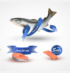 set salmon fillet steak and fish salmon vector image