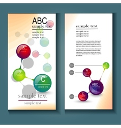 infographics flyer vector image