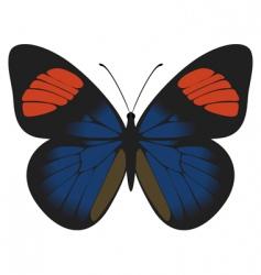 batesia hypochlora vector image vector image
