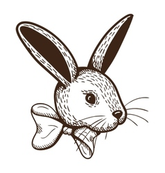 Rabbit with bow vector image
