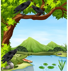 Crows and crocodile by the river vector image