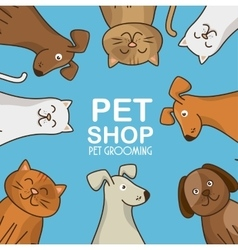 Group animals pet shop vector