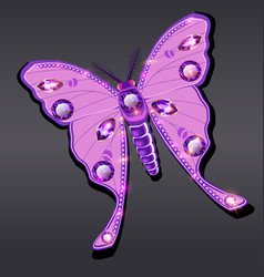 jewelry butterfly brooch pendant in precious vector image