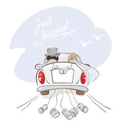 Newlyweds in a car vector