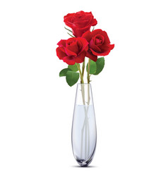 Roses in a glass vase isolated realistic 3d vector