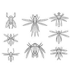 Set of hand drawn cartoon alien insect designs vector