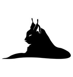 Sign of a black lynx vector