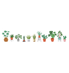 Urban jungle trendy home decor with plants vector