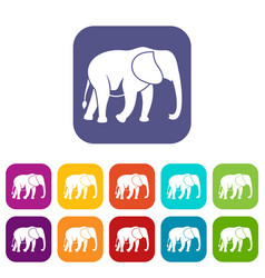 wild elephant icons set vector image
