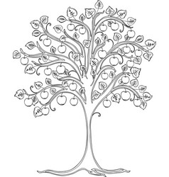 A contour drawing decorative apple tree vector