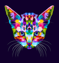 colorful kitten on abstract pop art vector image