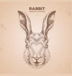 Hipster animal rabbit hand drawing muzzle bunny vector