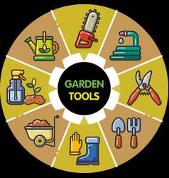 infographic set of garden tools vector image