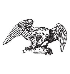 sitting eagle is a modern design vintage engraving vector image