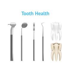 realistic metal dental equipment or instruments vector image
