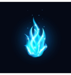 Blue Fire vector image
