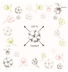 Cotton flower with crossed cotton swabs vector image vector image