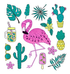 set of hand drawn elements with flamingo vector image vector image