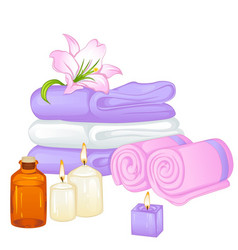 towels vector image vector image