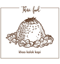 exotic khao kalok kapi dish from thai food vector image