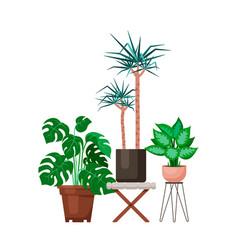 Flat design interior plants vector