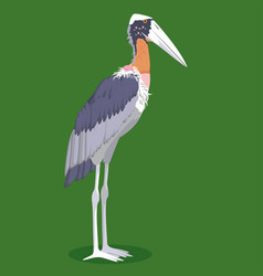 Greater adjutant stork cartoon bird vector