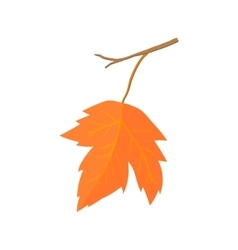Maple leave icon cartoon style vector