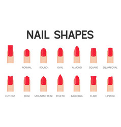 nail shapes for manicure and pedicure icon vector image