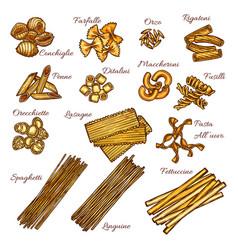 Pasta and spaghetti sketch set italian macaroni vector