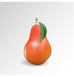 pear realistic 10eps red pear punching vector image