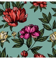 Flowers pions with foliage pattern vector image vector image