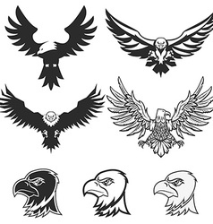 Set of eagles Design elements for logo label vector image vector image