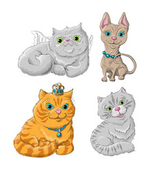 catset vector image
