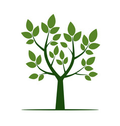 green tree with leaf vector image