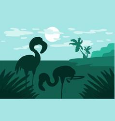 standing in the water flamingo vector image