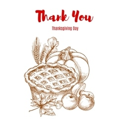 Thanksgiving greeting card Thank You vector image