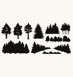 vintage nature elements composition vector image