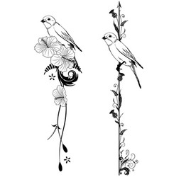 dividers with bird vector image vector image