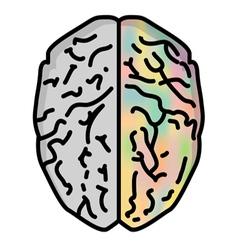 Brain 1 vector
