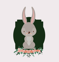 bunny in frame with ornament floral in colorful vector image vector image