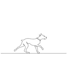 continuous one line drawing walking dog vector image