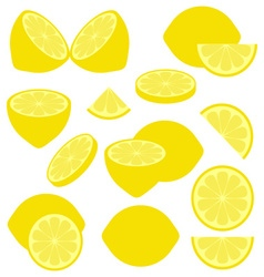 Lemon icons vector