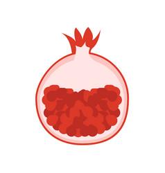 Pomegranate garnet icon vector
