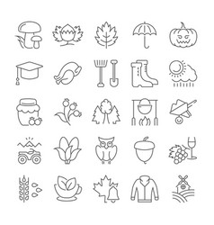 set flat line icons autumn vector image