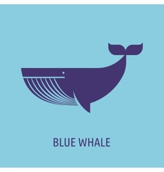 Whale icon on the blue baground vector