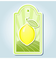 Lemon tag design vector image vector image